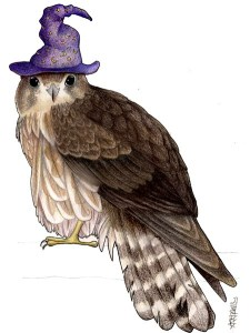Merlin in a Wizards Hat