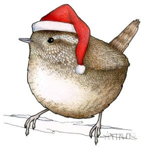 Winter Wren in a Santa Hat