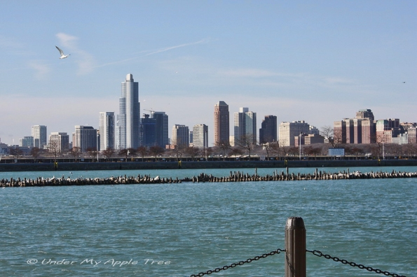 Chicago Lakefront South