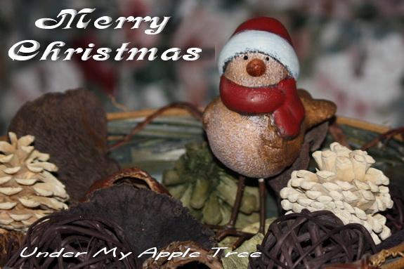ChristmasBird2011_IMG_3989