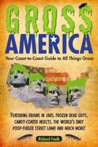 Gross America by Richard Faulk
