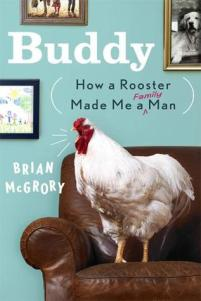 Buddy: How a Rooster Made Me a Man by Brian McGrory
