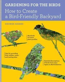 Backyard Bird Sanctuary