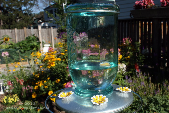 HummingbirdFeeder_IMG_9288