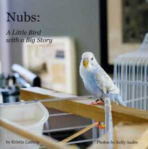 Nubs: A Little Bird with a Big Story