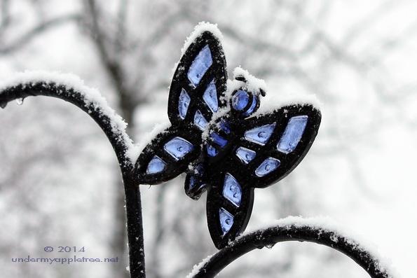 ButterflyHook_IMG_0613