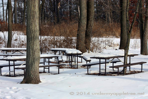 Picnic Tables - Churchill Woods_IMG_0597
