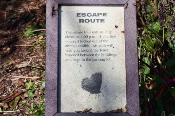 EscapeRoute_IMG_3045