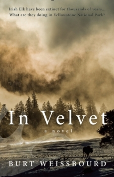 In Velvet by Burt Weissbourd