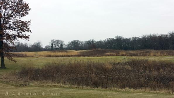Cantigny Golf