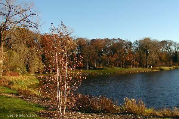 Lake Ellyn
